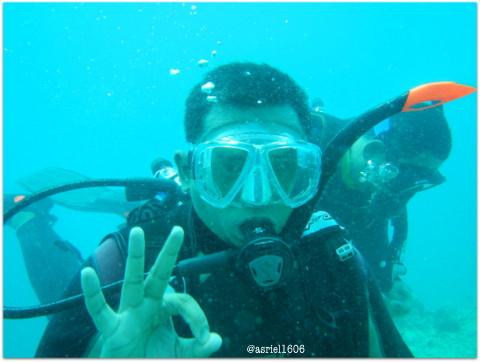Semuanya menyenangkan dan baik-baik saja di bawah laut