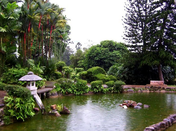 lake garden13