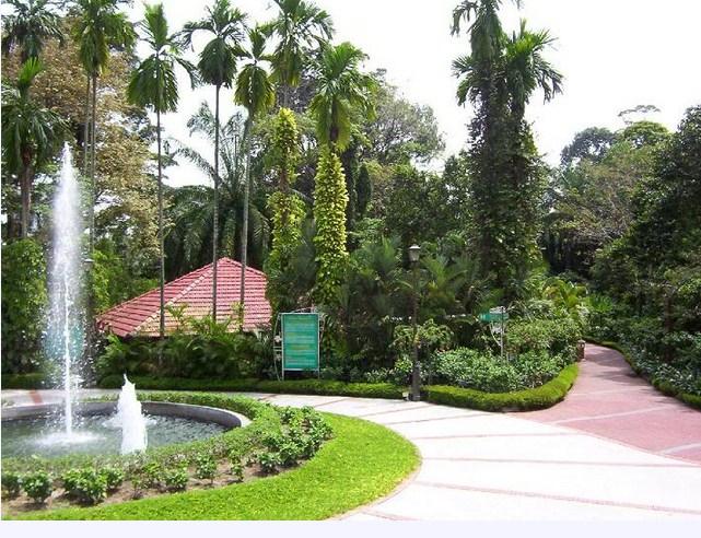 lake garden14